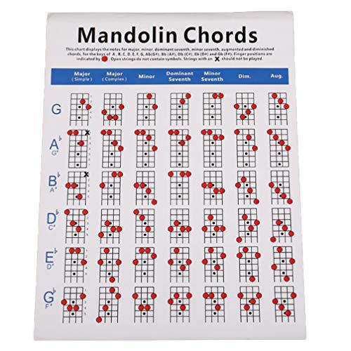 Artibetter Mandoline Akkoorden Muziekstandaard Akkoordenschema's Vingerzetting Gids Oefenkaart Formaat L