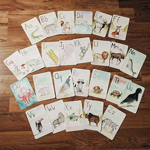 A-Z Animal Alphabet Flash Cards