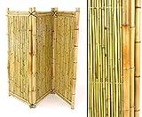 Biombo de bambú (3 piezas, 150 x 180 cm)