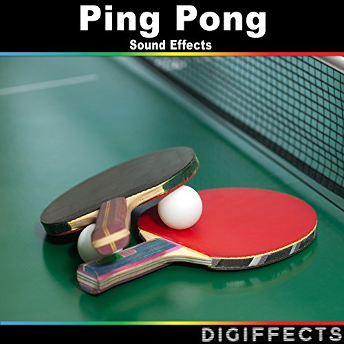 Table Tennis or Ping Pong Game
