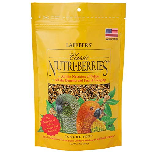 Price comparison product image LAFEBER'S Classic Nutri-Berries Conure Food,  Made with Non-GMO and Human-Grade Ingredients,  for Conures,  10 oz