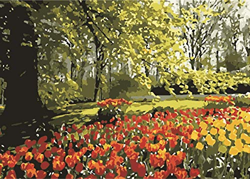 Peinture À L'Huile Numérique Curcuma Floral Parfum Peinture Décoration De La Maison Bricolage Cadeau Cadeaux