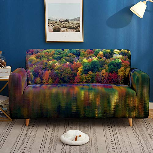 HXTSWGS Protector elástico para Muebles,Fundas 3D para sofás, Funda de sofá elástica elástica, Funda de sofá de 1/2/3/4 plazas, Fundas de sofá para salón-BDW50_2-plazas 145-185cm