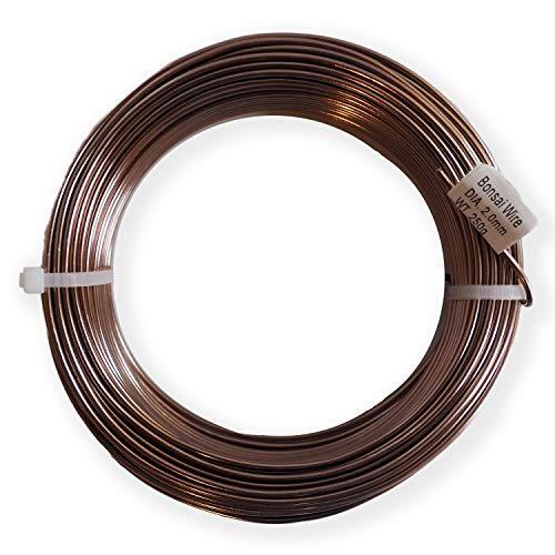 Anodized Aluminum 2.0mm Bonsai Training Wire 250g Large Roll (95 feet) - Choose Your Size and Color (2.0mm, Brown)