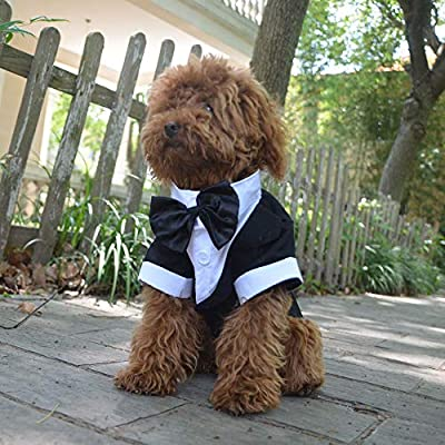 lovelonglong Pet Costume Dog Suit Formal Tuxedo with Black Bow Tie for Small Dogs Pug Clothing Black XL