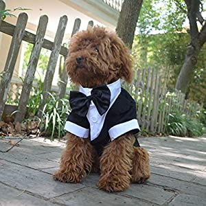 Lovelonglong Pet Costume Dog Suit Formal Tuxedo with Black Bow Tie for Large Medium Small Dogs Cat Clothes