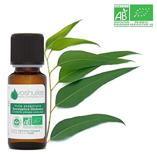 Huile Essentielle BIO d'Eucalyptus Globulus - 100% Pure et Naturelle - HEBBD et ECOCERT - Huile Essentielle Rafraichissante pour Utilisation Alimentaire - Parfum Aromatique - 10 ml