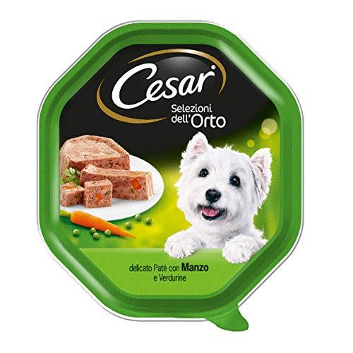 Cesar, Gartenvielfalt, Nassfutter für Hunde, 14 Schalen à 150 g
