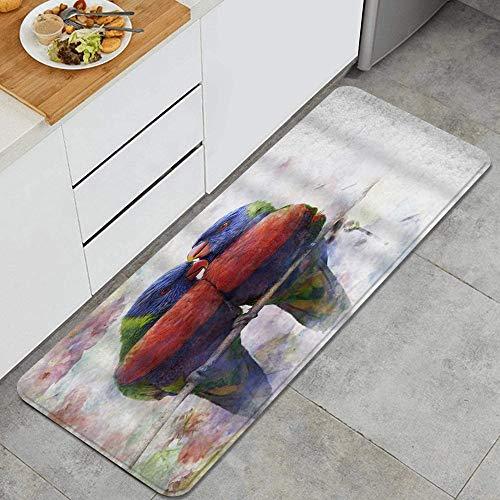 BOKEKANG Loro acuarela imagen flor animal pintura pájaro colorido naturaleza Lorikeet anti fatiga alfombra de cocina confort alfombras antideslizante aceite resistente a las manchas fácil de limpiar