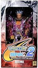 Capcom vs. SNK 2 Series 2 Akuma Action Figure Silver Variant