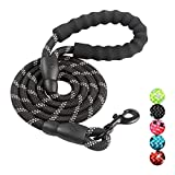 N/ 5 FT Strong Dog Leash with Comfortable Padded Handle, Highly Reflective Threads Durable Dog Leash for Puppies Small Medium and Large Dogs (Black)