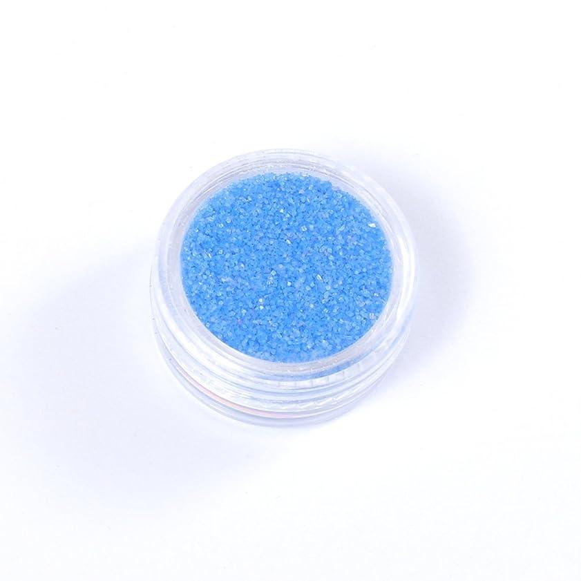 カンガルー呼び出す魅力的夜光 パウダー 青 ブルー ケース付 ホログラム 蓄光 【ラインストーン77】