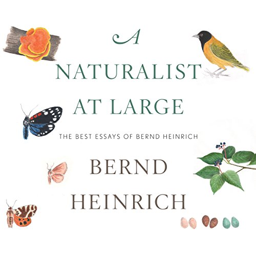 A Naturalist at Large audiobook cover art