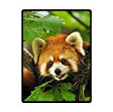 Custom Special Design funny cute red panda Fleece Blankets Throws 58 x 80 inches(Large) by red panda Fleece Blanket