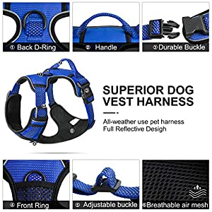 Fida Dog Harness Full Reflective Design, No-Pull Pet Vest Harness with 2 Leash Clips, Adjustable Soft Padded with Easy Control Handle for Small Dogs(S, Blue)