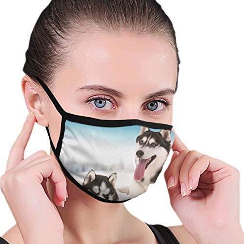 Husky Dog Anti Luftstaub- und Verschmutzungsmaske Waschbare Masken Winddichte Motorrad-Gesichtsmasken