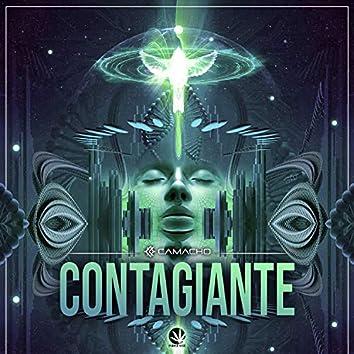 Contagiante II