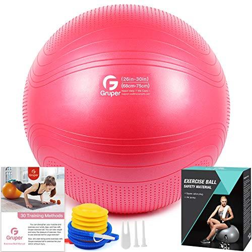 Gruper Yoga Stabilitätsball–Extra Dicker Gymnastikball für Fitness Balance Workout–Anti-Burst Stuhl für Zuhause und Büro Schreibtisch–inkl. Handpumpe und Workout Guide Zugang (Rosa, 65cm (26 inch),L)