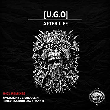 Afterlife,the remixes
