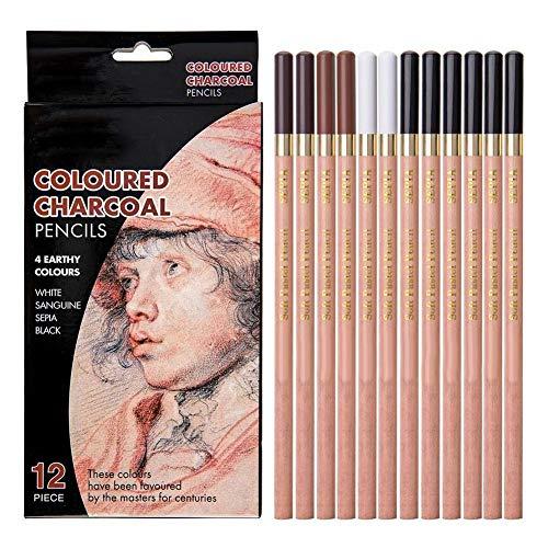 12 stuks koolstof-tekening potlodenset, 4 kleuren schetsen potloden set niet giftig tekenpotloden professionele kunstenaarsbenodigdheden