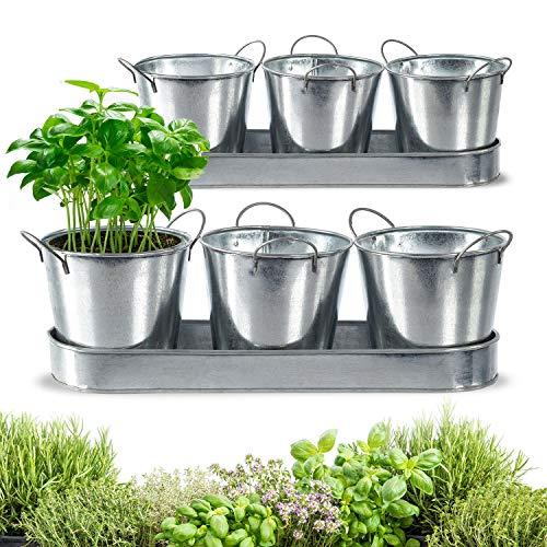 Juego de 2 macetas de cocina con bandeja, para hierbas aromáticas, balcón, excelente hierbas de cocina, galvanizadas (13 cm de diámetro, galvanizadas)