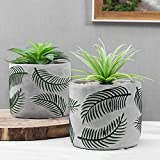 MyGift Rustic Chic Concrete Flower Pots with Embossed Green Palm Leaf Pattern, Set of 2