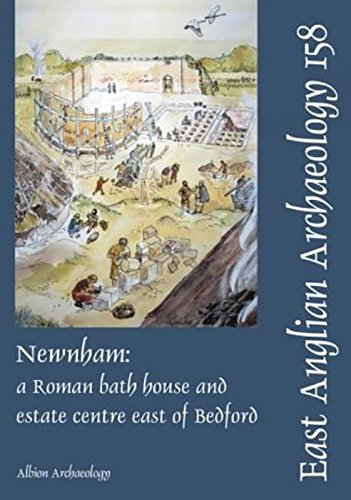 Newnham: a Roman bath house and estate centre east of Bedford (East Anglian Archaeology Monograph)
