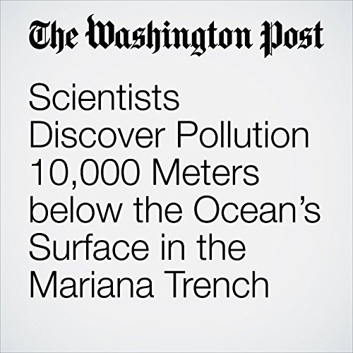 Scientists Discover Pollution 10,000 Meters below the Ocean's Surface in the Mariana Trench copertina