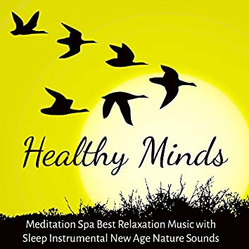 Healthy Minds - Meditation Spa Best Relaxation Music with Sleep Instrumental New Age Nature Sounds