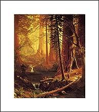 Albert Bierstadt 16x18 Art Print - Giant Redwood Trees of California