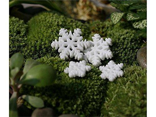 Junson Cute Miniature Micro Landscape Snowflake Ornaments DIY Garden Decor Home Best Plant Gift (White) for Decoration