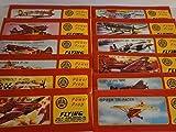 Schnooridoo 10 x Styroporflieger Flugzeug - Flugzeuge aus Styropor - Bausatz - Wurfgleiter Mitbringsel Kindergeburtstag Zero Tomahawk Mustang