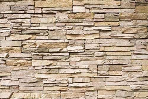 AOFOTO 10x8ft Vinyl Photography Background Stacked Stone Wall Backdrops for Pictures Travel Vacation Kids Children Adults Pets Portrait Video Display TV Film Production Vinyl Photo Backcloth Screen