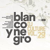 Blanco Y Negro DJ Culture Vol. 29