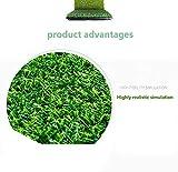 YNGJUEN 10 mm Kunstrasens gefälschte Plastik Rasen Kunstrasen Baumschule Dachterrasse for die Außenwand dekorativen Teppichschoner (Size : 2mx6m) - 3