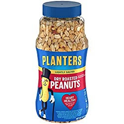 PLANTERS Lightly Salted Dry Roasted Peanuts, 16 oz. Resealable Jar | Peanut Snack | Great Movie Snac