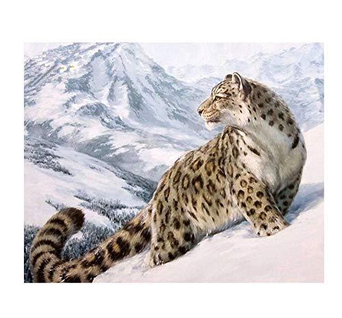 Malen Sie mit den Zahlen Tiger Head King Animal DIY Digital Painting by Nummbers Modern Wall Art Canvas Painting Geschenk Weihnachten Home Decor 30 x 40 cm (12 x 13 Zoll)