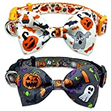 2 Pack Halloween Dog Collar with Bowtie, Holiday Jack-O-Lantern and Pumpkin Collar for Small Medium Large Dogs Pets Puppies (Small)