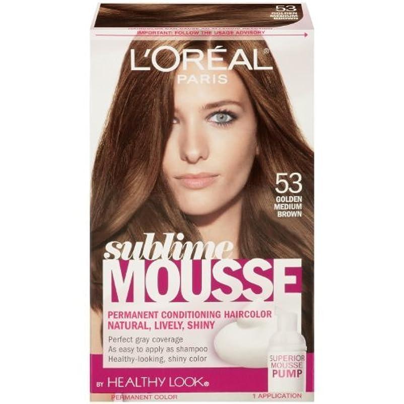 小麦サミットマラウイL'Oreal Paris Sublime Mousse by Healthy Look Hair Color, 53 Golden Medium Brown by SUBLIME MOUSSE [並行輸入品]