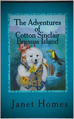 The Adventures of Cotton Sinclair Pegasus Island (English Edition)
