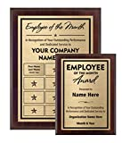 Employee of The Month Award Plaque (6x8)