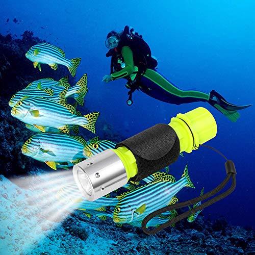 QKURT Antorcha de Buceo, 1100 Lumen CREE XM-L2 Professional Diving Light Waterproof Underwater Torch for Scuba Diving and Other Outdoor Activities