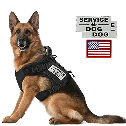 Tactical Service Dog Vest Harness Outdoor Training Handle Water-Resistant Comfortable Military Patrol K9 Dog Harness with Handle (M, Black)