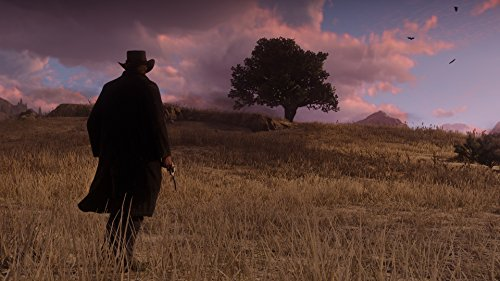 Red Dead Redemption 2: édition spéciale Xbox One - 14