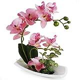 True Holiday - Arreglos de orquídeas artificiales con jarrón de porcelana blanca, flores y plantas...