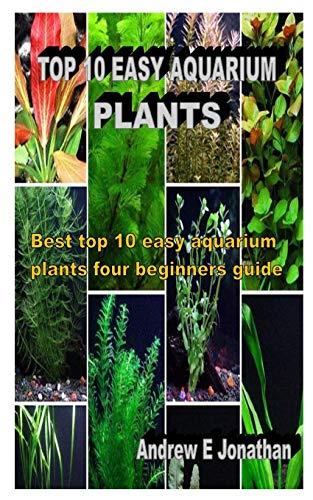 TOP 10 EASY AQUARIUM PLANTS: Best top 10 easy aquarium plants four beginners guide