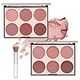 [2Pack] Erinde 12 Classic Colors Face Blush Palette with Blush Brush, Blendable Matte Peach Blush, Shimmer Blush for Girls Contour Makeup Palette, Natural Blush, Highlighter Makeup