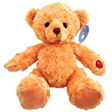 AnnoyingTeddy, Best Birthday Gag Gift, Singing Teddy Bear, Sings an Annoying Happy Birthday Song for Up To 2 Hours, Funny Prank Gift for Men, Women & Kids, Great for 40th, 50th, 60th, 70th birthdays!