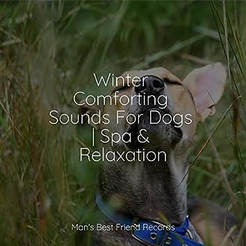 Reiki Healing Theta Waves For Dogs