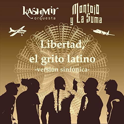 Kashmir Orquesta feat. Montojo Y La Suma